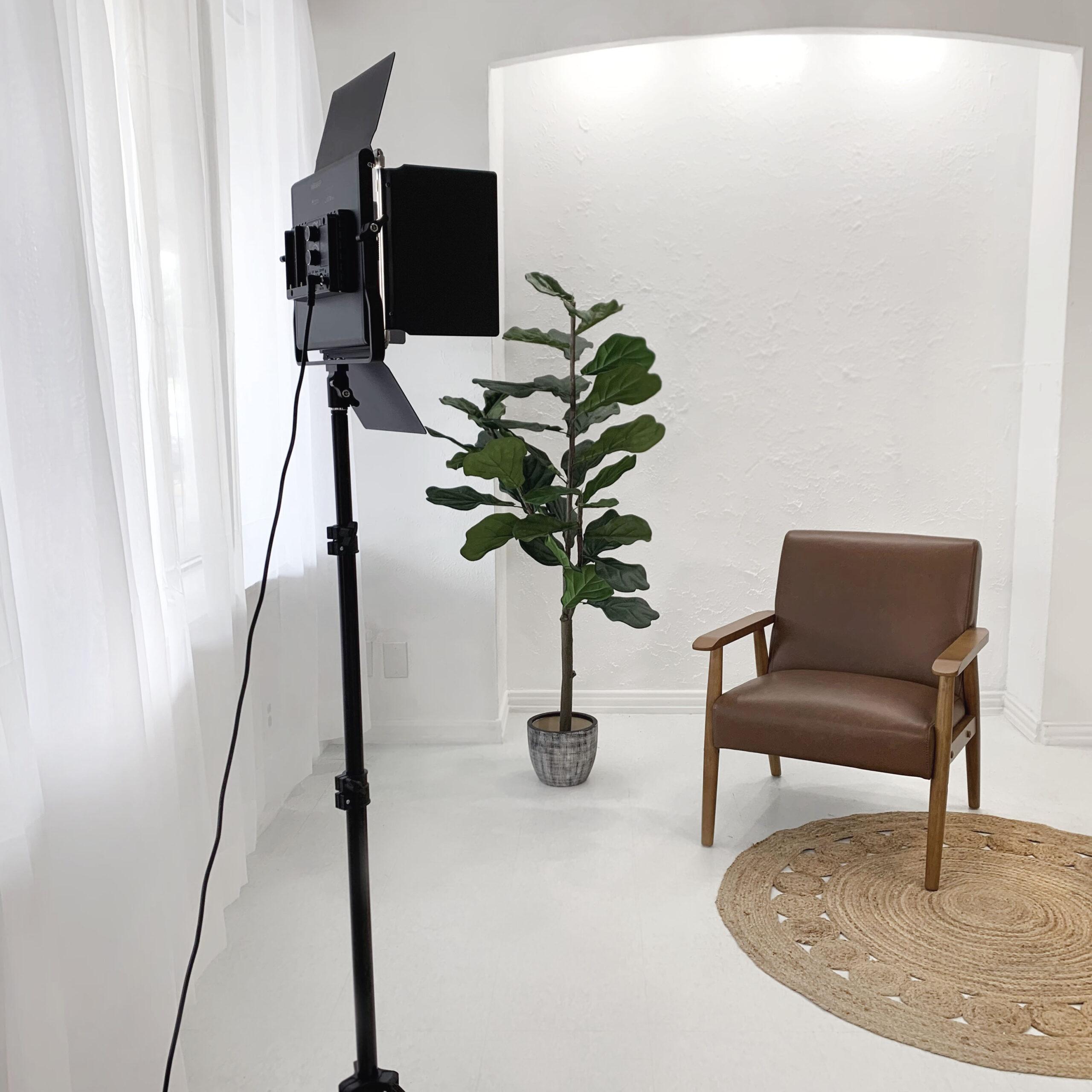 Brown Chair & Plant at Sun Catcher Studio
